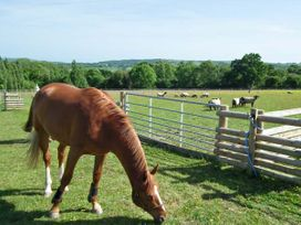2 The Stables - Isle of Wight & Hampshire - 12934 - thumbnail photo 27