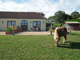 2 The Stables - Isle of Wight & Hampshire - 12934 - thumbnail photo 31