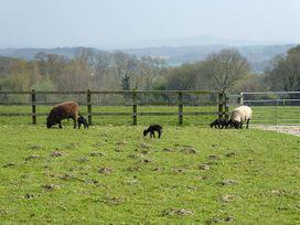 2 The Stables - Isle of Wight & Hampshire - 12934 - thumbnail photo 21