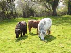 2 The Stables - Isle of Wight & Hampshire - 12934 - thumbnail photo 23