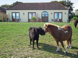 3 The Stables - Isle of Wight & Hampshire - 12935 - thumbnail photo 19