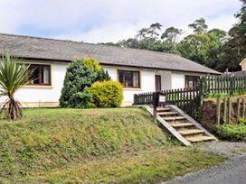 Badgers Brook - South Wales - 13470 - thumbnail photo 10