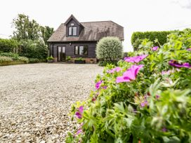 Belview Cottage - Dorset - 1357 - thumbnail photo 31