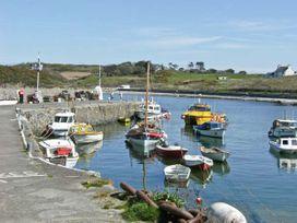 Tyddyn Gyrfa Cottage - Anglesey - 13650 - thumbnail photo 15