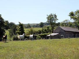 The Shippon - North Wales - 1390 - thumbnail photo 12