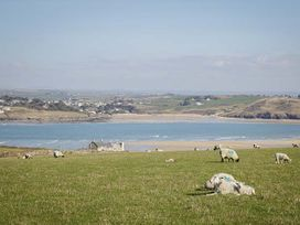 Waterside Cottage - Cornwall - 14509 - thumbnail photo 37