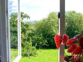 2 Penrhynbach - Mid Wales - 14991 - thumbnail photo 14