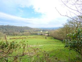 2 Penrhynbach - Mid Wales - 14991 - thumbnail photo 17