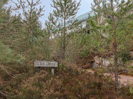 The Laggan Drey - Scottish Highlands - 1525 - thumbnail photo 23