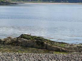 1A Kylerhea - Scottish Highlands - 17274 - thumbnail photo 6