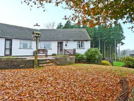 Stagsholt Lodge - Devon - 18132 - thumbnail photo 7