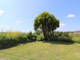Rosewall Cottage - Cornwall - 20668 - thumbnail photo 19