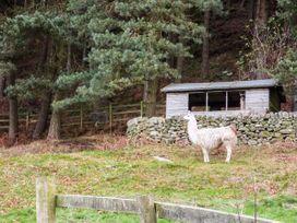 Spout Cottage - Peak District - 2126 - thumbnail photo 28