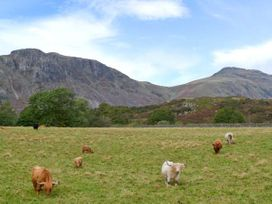 Raceside Farm - Lake District - 22575 - thumbnail photo 11