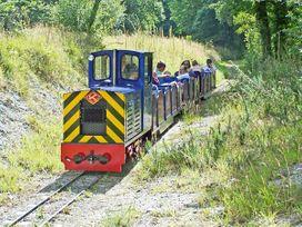 The Station Flat - Cornwall - 22670 - thumbnail photo 16
