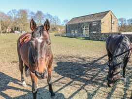 Bullace Barn - Peak District - 23330 - thumbnail photo 36