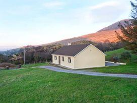 Lyreboy - County Kerry - 23463 - thumbnail photo 1