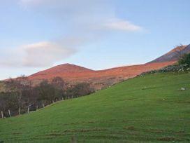 Lyreboy - County Kerry - 23463 - thumbnail photo 14