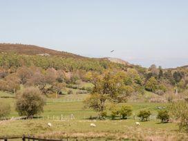 Oakwood Stables - North Wales - 25107 - thumbnail photo 15