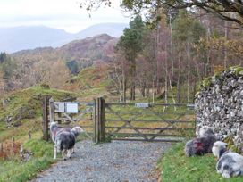 Yew Tree Cottage - Lake District - 25868 - thumbnail photo 11