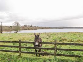 Cloonaquinn - North Ireland - 25928 - thumbnail photo 31
