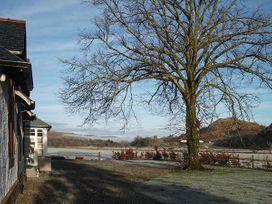 Crann Teile (Lime Tree) - Scottish Highlands - 26551 - thumbnail photo 16