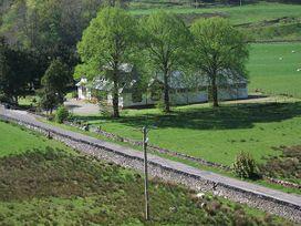 Crann Teile (Lime Tree) - Scottish Highlands - 26551 - thumbnail photo 17