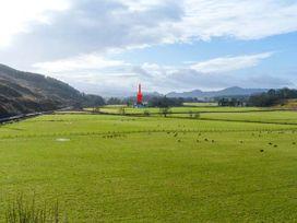 Crann Teile (Lime Tree) - Scottish Highlands - 26551 - thumbnail photo 19