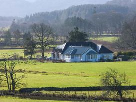 Crann Teile (Lime Tree) - Scottish Highlands - 26551 - thumbnail photo 18