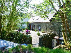Crann Teile (Lime Tree) - Scottish Highlands - 26551 - thumbnail photo 29