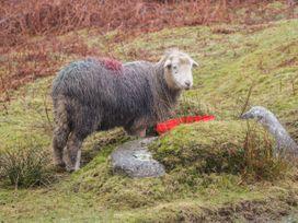 Winster Fields - Lake District - 26823 - thumbnail photo 29