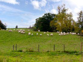 The Old Barn - Shropshire - 2697 - thumbnail photo 11