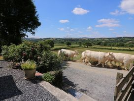 Llety'r Wennol - Mid Wales - 27088 - thumbnail photo 21