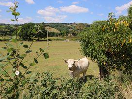 Llety'r Wennol - Mid Wales - 27088 - thumbnail photo 23