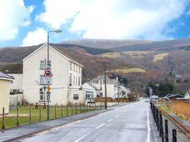 Seagulls - North Wales - 27262 - thumbnail photo 2