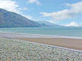 Seagulls - North Wales - 27262 - thumbnail photo 13