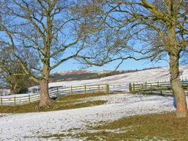 Lemongrass - Yorkshire Dales - 27268 - thumbnail photo 11