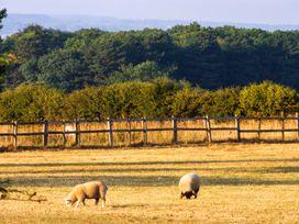 Hartswood West - Whitby & North Yorkshire - 27419 - thumbnail photo 8