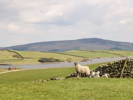 Canalside Cottage - Yorkshire Dales - 27990 - thumbnail photo 17