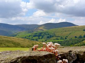 Wray Green - Lake District - 2888 - thumbnail photo 10