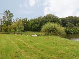 Little Gwaelod - Anglesey - 2889 - thumbnail photo 20