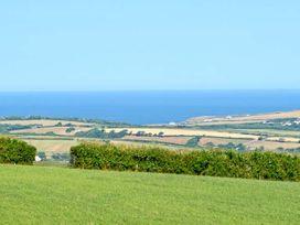 Foxglove - Cornwall - 29356 - thumbnail photo 9