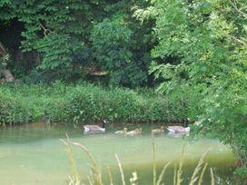 Shepherd's Rest - Cotswolds - 31096 - thumbnail photo 15