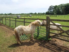 Shepherd's Rest - Cotswolds - 31096 - thumbnail photo 10