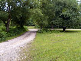 Endymion - South Coast England - 3575 - thumbnail photo 10