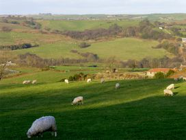 Lanes Barn - North Yorkshire (incl. Whitby) - 3728 - thumbnail photo 9