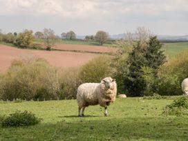 Millbrook Barn - South Wales - 3753 - thumbnail photo 42