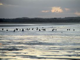 Hen Felin Uchaf - Anglesey - 3939 - thumbnail photo 27