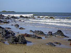 Driftwood - Anglesey - 4196 - thumbnail photo 14