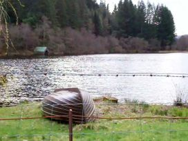 Aberfoyle Apartment - Scottish Lowlands - 4295 - thumbnail photo 11